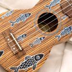 oqan soprano ukulele eduardo bolioli