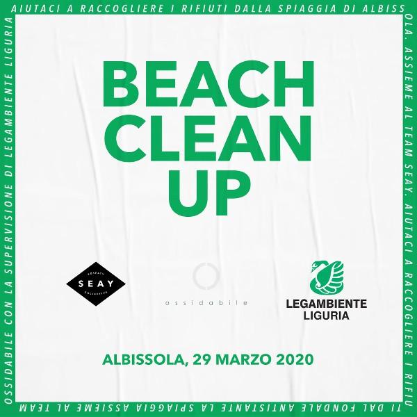 beach clean up seay 2020
